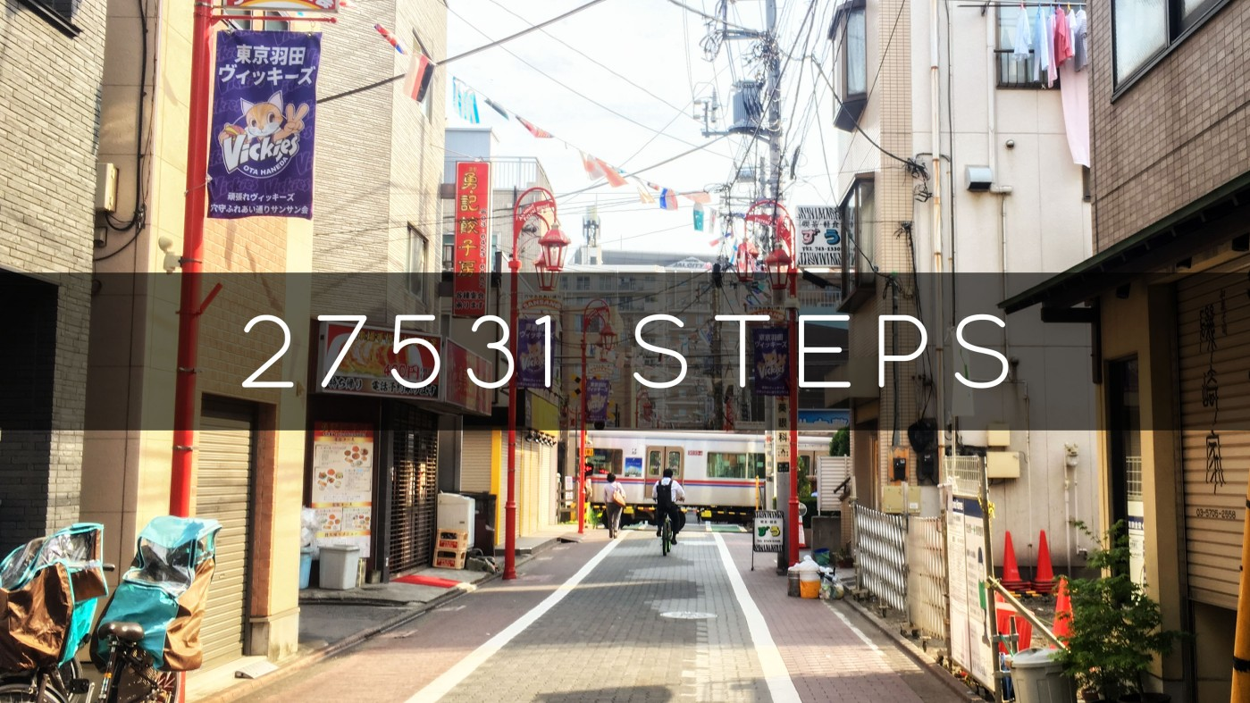 27531 Steps From Haneda to Asakusa to Akibahara to Mt. Fuji