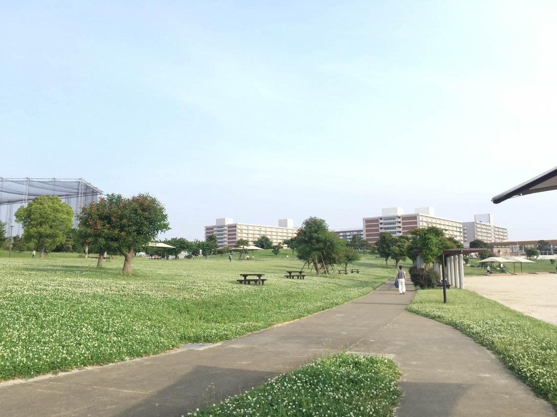 haneda tokyo run scenery 4