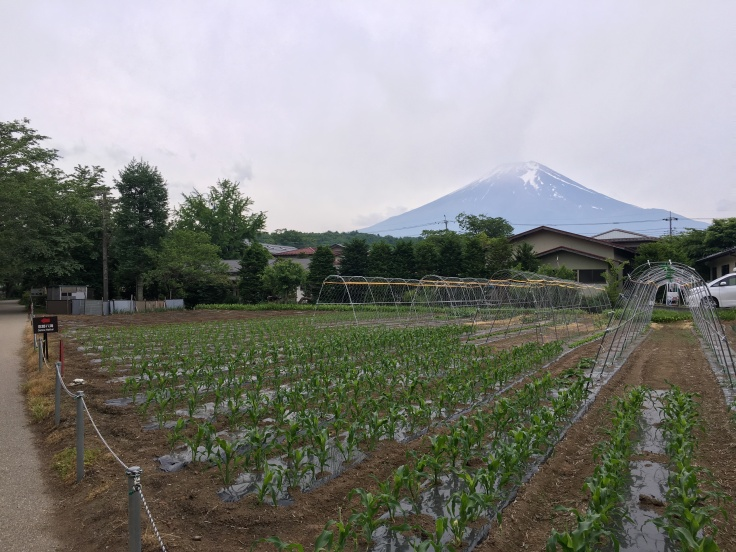 Small town at Mount Fuji Japan 1