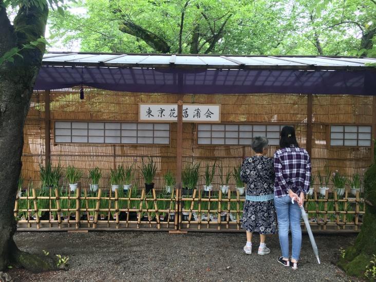 Yasukuni Shrine Kudanshita Tokyo Japan 5