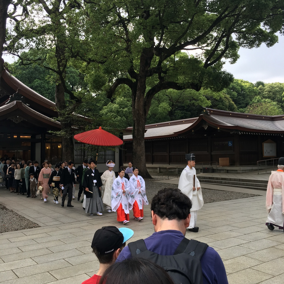 Meiji Jingu Tokyo Japan 4