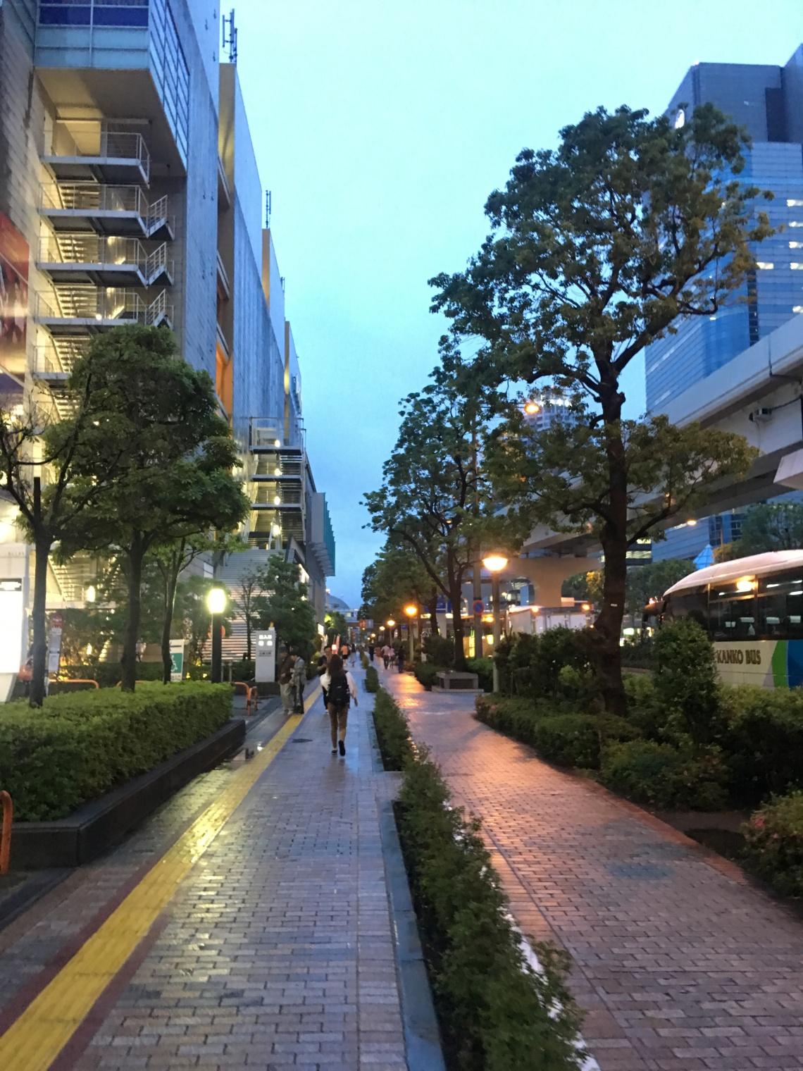 Street view at Odaiba Tokyo Japan
