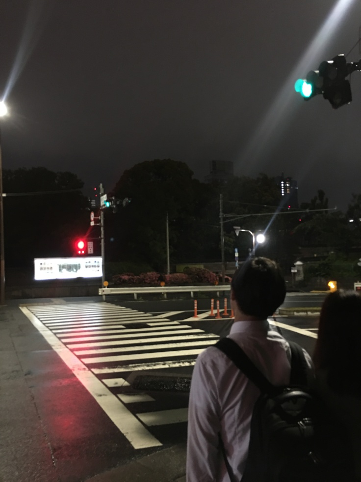 Couple 1 near Tokyo Tower Japan